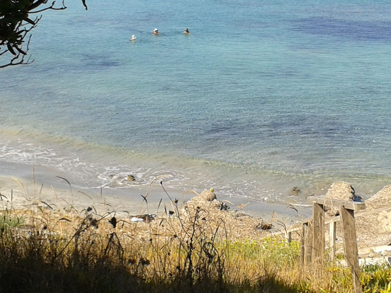 Beach img 3